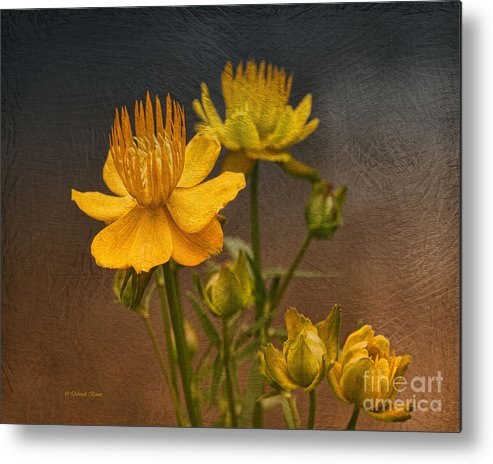 Flower Metal Print featuring the photograph Yellow Aged Floral by Deborah Benoit