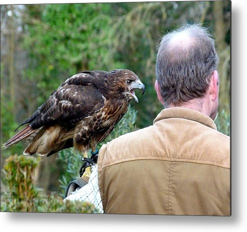 Bird Of Prey Metal Print featuring the photograph Im Talking To You by Karen Grist