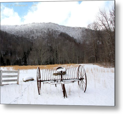 Snow Metal Print featuring the photograph January Day by Carolyn Postelwait