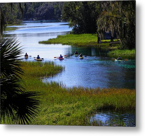 Nature Metal Print featuring the photograph Let's Kayak by Judy Wanamaker
