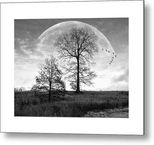 2d Metal Print featuring the photograph Moonlit Silhouette by Brian Wallace