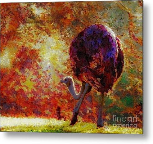 African Metal Print featuring the photograph Ostrich II by Arne Hansen