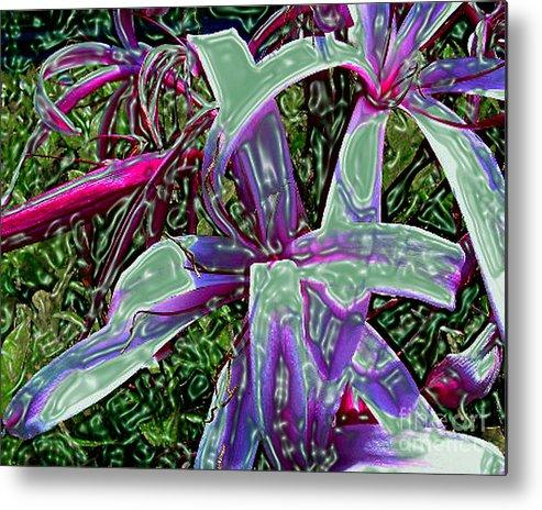 Flower Metal Print featuring the photograph Plasticized Cape Lily Digital Art by Merton Allen