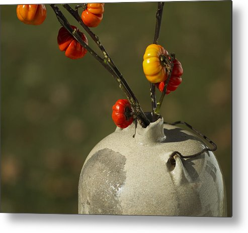 Solanum Integrifolium Metal Print featuring the photograph Pumpkin On A Stick In An Old Primitive Moonshine Jug by Kathy Clark