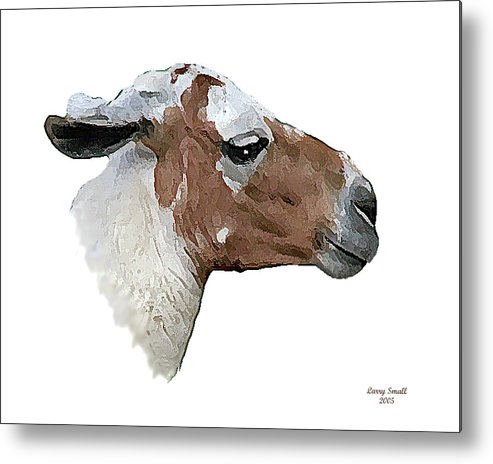 South America Metal Print featuring the photograph South American Goat by Larry Small