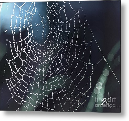 Spiderweb Metal Print featuring the photograph Spiderweb Blues by Artist and Photographer Laura Wrede