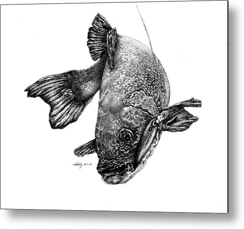Walleye Metal Print featuring the drawing Walleye by Kathleen Kelly Thompson
