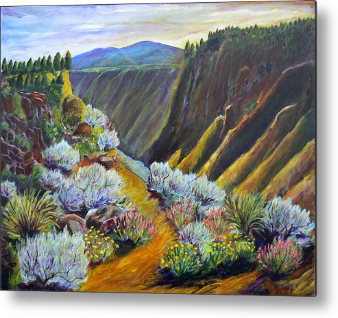 Wild Rivers Metal Print featuring the painting Wild Rivers New Mexico by Mark Malone