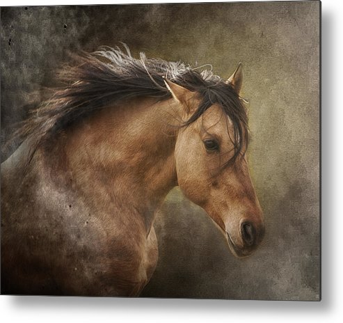 Equine Metal Print featuring the photograph Chase The Wind by Ron McGinnis