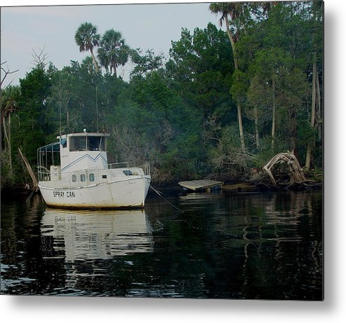 Steinhatchee Metal Print featuring the painting The Spray Can by Debbie May