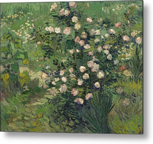 Dutch Metal Print featuring the painting Roses by Vincent van Gogh
