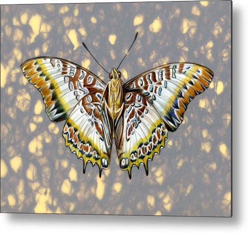 Butterflies Metal Print featuring the painting African Butterfly by Mindy Lighthipe