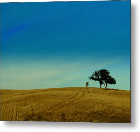 Tree Metal Print featuring the photograph Almost Home by Kerry Reed