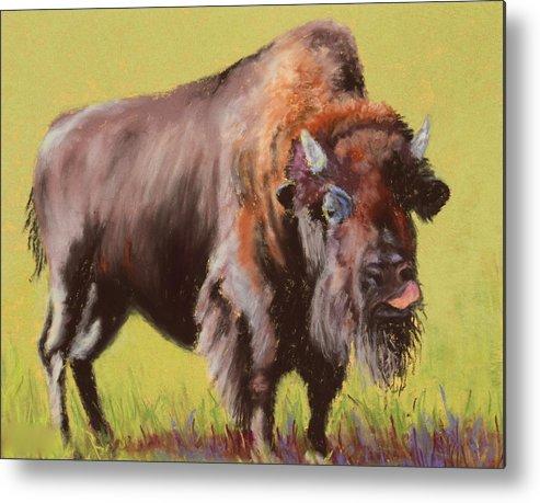 Buffalo Metal Print featuring the painting Big Boy by Nancy Jolley