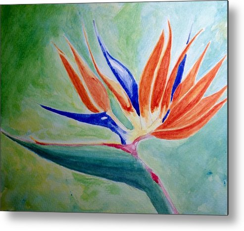 Nature Metal Print featuring the painting Bird Of Paradise, Noon by Nick Young