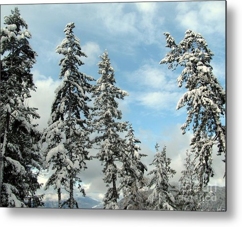 Winter Metal Print featuring the photograph Blue Horizons by Leone Lund