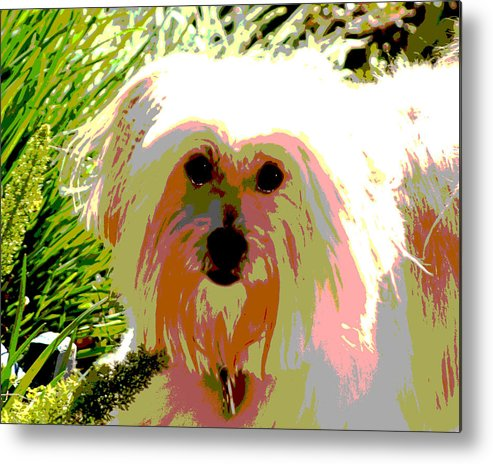 Portrait Metal Print featuring the photograph Bonnie In Color by Ellen Lerner ODonnell