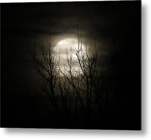 Moon Metal Print featuring the photograph Bright Night by Laurel Powell