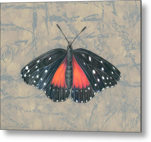 Moths Metal Print featuring the painting Crimson Patch Butterfly by Mindy Lighthipe