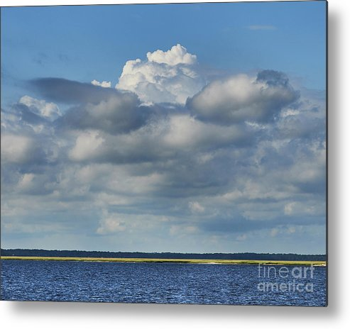 Cumberland Metal Print featuring the photograph Cumberland Island by Stanton Tubb