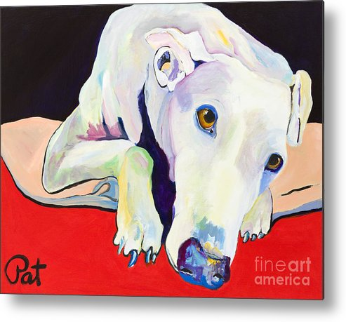 Animals Pets Greyhound Metal Print featuring the painting Cyrus by Pat Saunders-White