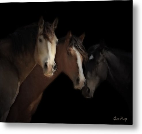 Mustang Metal Print featuring the photograph Desert Ghosts by Gene Praag