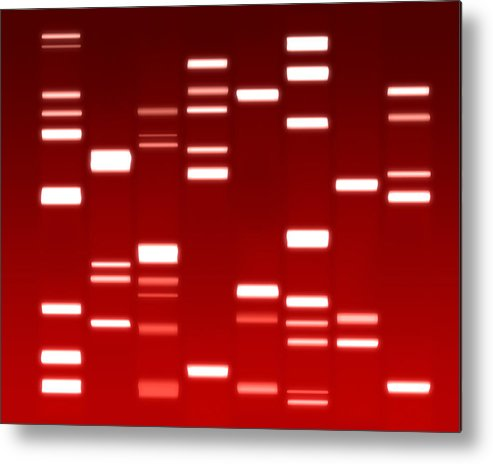 Dna Metal Print featuring the digital art Dna Red by Michael Tompsett