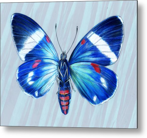 Moths Metal Print featuring the painting Electric Blue Moth by Mindy Lighthipe
