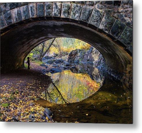 Eye Metal Print featuring the photograph Eye by Mary Amerman