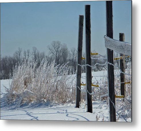 Weather Metal Print featuring the photograph Fence Posts In Ice by Martie DAndrea