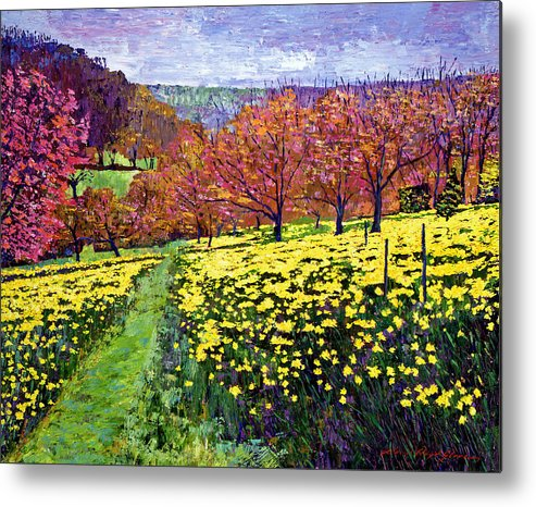 Impressionist Metal Print featuring the painting Fields Of Golden Daffodils by David Lloyd Glover