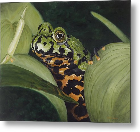 Toad Metal Print featuring the painting Fire Belly Toad by Elizabeth Rieke Hefley