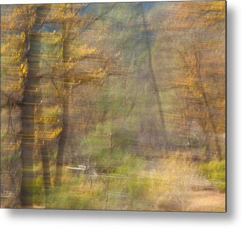 Autumn Metal Print featuring the photograph Fleeting Autumn by Denise Dethlefsen