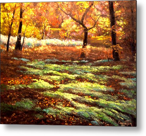 Connie Tom Metal Print featuring the painting Forest Floor by Connie Tom