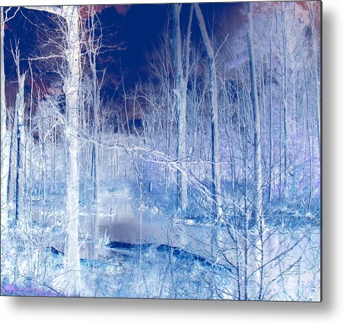Ice Metal Print featuring the photograph Frozen Forest by Tracy Daniels
