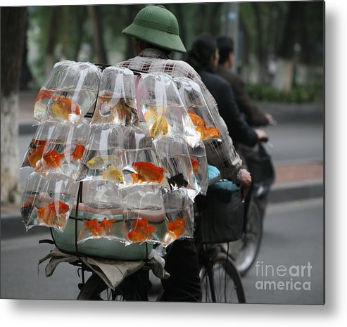 Vietnam Metal Print featuring the photograph Goldfish In A Bag Vietnam On Bicycle Unique by Chuck Kuhn