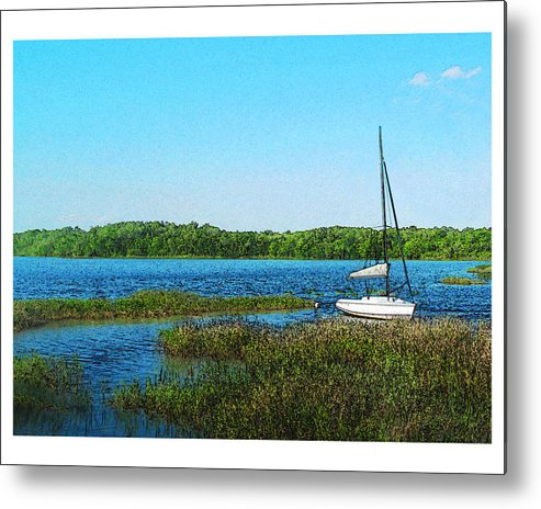 Landscape Metal Print featuring the photograph Lake At Hamony Fl by Deborah Hildinger