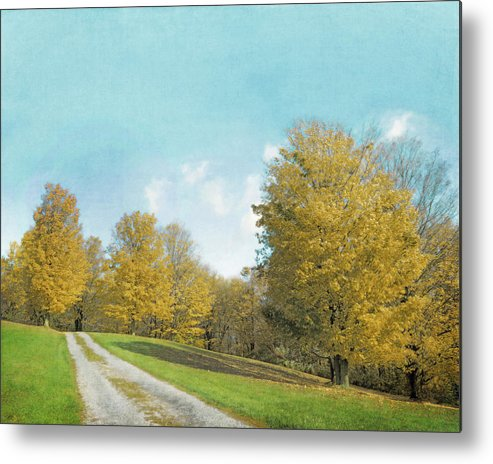 Mustard Yellow Art Metal Print featuring the photograph Mustard Yellow Trees And Landscape by Brooke T Ryan