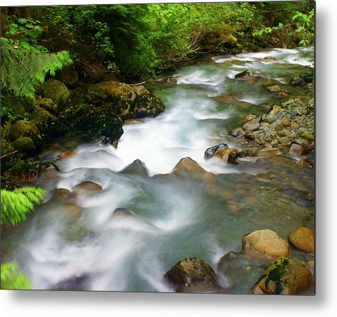 Creek Metal Print featuring the photograph Mystic Creek by Marty Koch