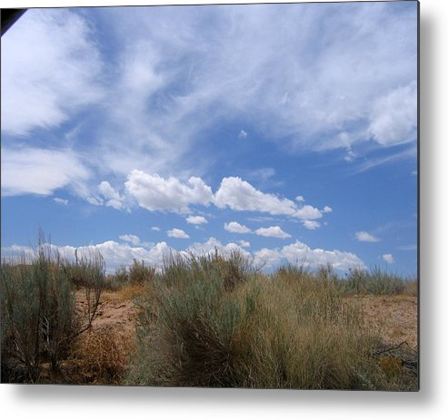 Landscape Metal Print featuring the photograph New Mexico Sand Grass Sky by Natey Freedman
