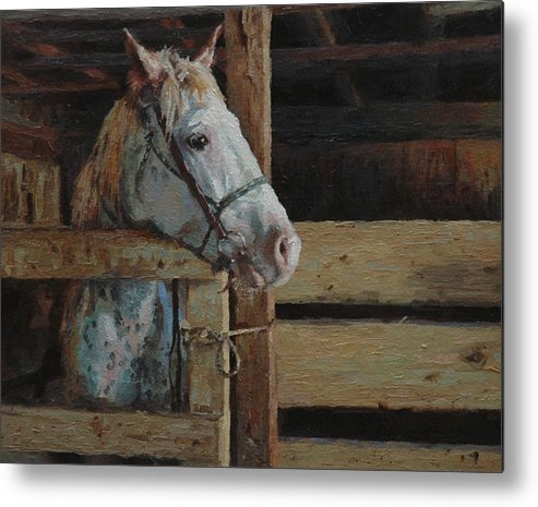 Horse Metal Print featuring the painting Outdoor Girl by Jim Clements