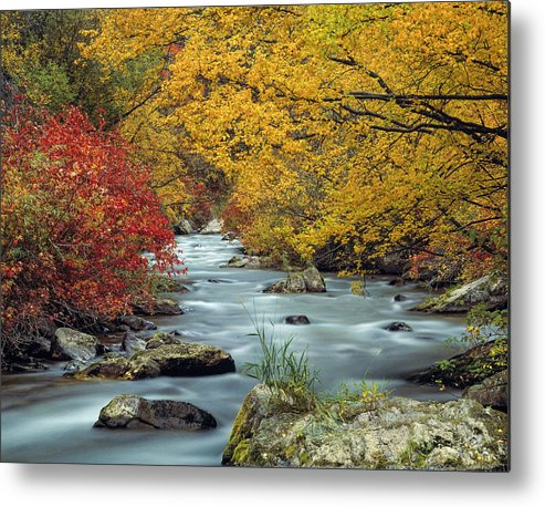 Autumn Metal Print featuring the photograph Palisades Creek by Leland D Howard