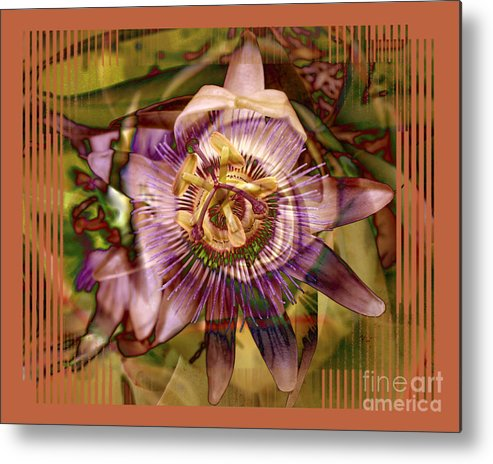 Flower Metal Print featuring the photograph Passion by Chuck Brittenham
