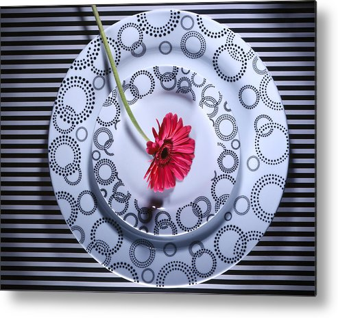 Plates Metal Print featuring the photograph Patterns by Jessica Wakefield