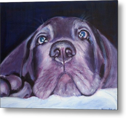 Portrait Metal Print featuring the painting Pepper by Fiona Jack