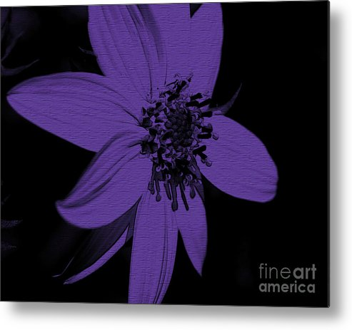 Flower Metal Print featuring the photograph Purple Sunflower by Smilin Eyes Treasures