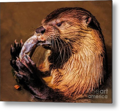 River Metal Print featuring the photograph River Otter With His Catch Of The Day by Paulette Thomas