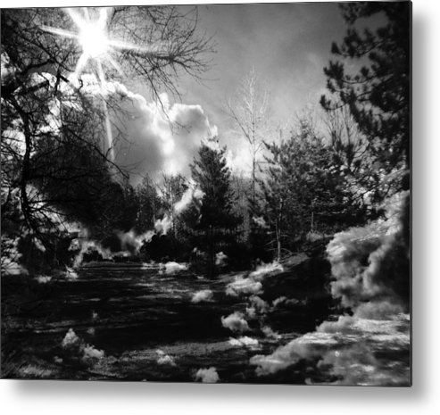 Black And White Metal Print featuring the photograph Rural Life In Black And White by Sharon Wilkinson