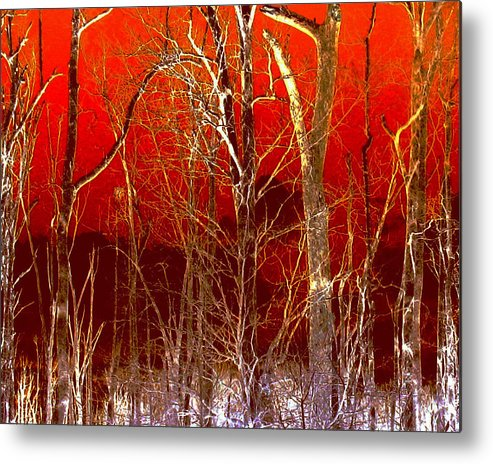 Manipulated Photo Metal Print featuring the photograph Rust Forest by Tracy Daniels