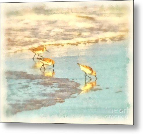 Seascape Metal Print featuring the photograph Sandpipers Along The Shoreline by Betsy Foster Breen